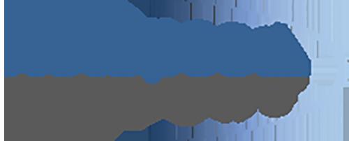 netspeed-systems-logo_55